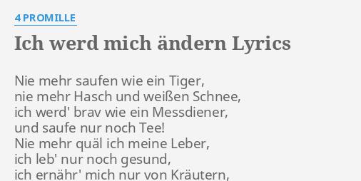 Ich Werd Mich ändern Lyrics By 4 Promille Nie Mehr Saufen Wie