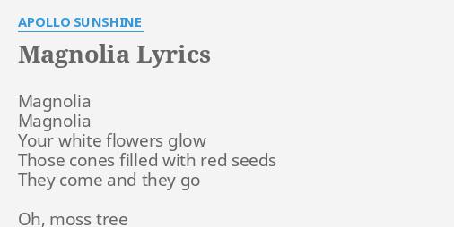 Magnolia Lyrics By Apollo Sunshine Magnolia Magnolia Your White