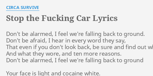 Stop the fucking car lyrics pic 83