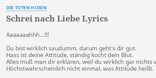 Schrei Nach Liebe Lyrics By Die Toten Hosen Aaaaaaahhh Du