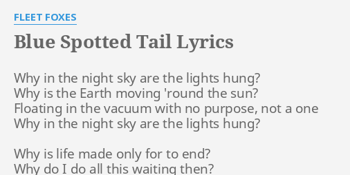 Blue Spotted Tail Lyrics By Fleet Foxes Why In The Night