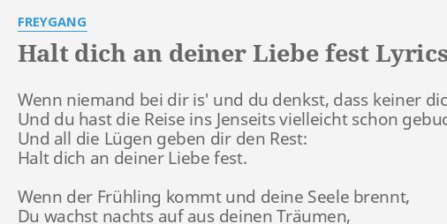 Halt Dich An Deiner Liebe Fest Lyrics By Freygang Wenn Niemand Bei Dir