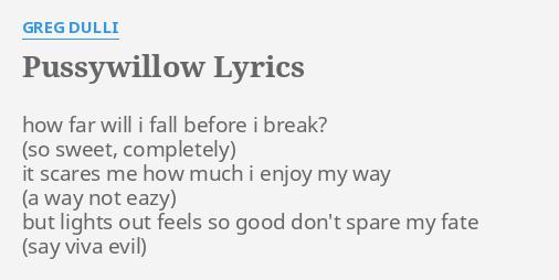 Pussy willow lyrics — photo 15