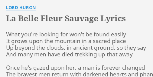 La Belle Fleur Sauvage Lyrics By Lord Huron What You Re Looking For