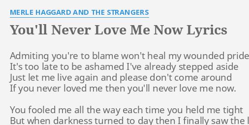you never loved me lyrics
