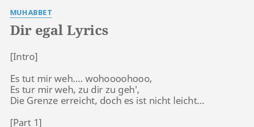 Dir Egal Lyrics By Muhabbet Es Tut Mir Weh