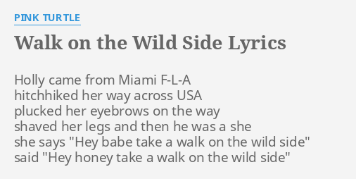 Image result for walk on the wild side