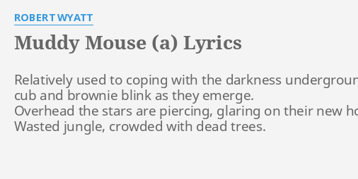 MUDDY MOUSE (A)