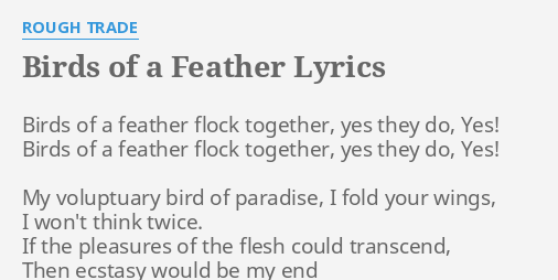 birds of a feather flock together essay If birds of a feather flock together, they don't learn enough to me, this quote means that you have to be on your own to learn, to grow, and create your own life.