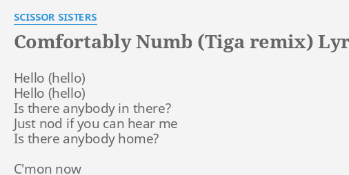 COMFORTABLY NUMB (TIGA REMIX)