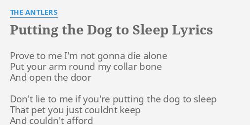 putting the dog to sleep lyrics