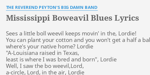 MISSISSIPPI BOWEAVIL BLUES LYRICS By THE REVEREND PEYTONS BIG D BAND Sees A Little Boll